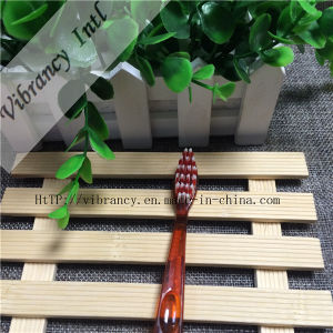 4~5 Star High Quality Brownplastic Handle Soft Brush Toothbrush for Hotel pictures & photos