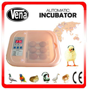 2015 Newest Mini Incubator Va-12 pictures & photos