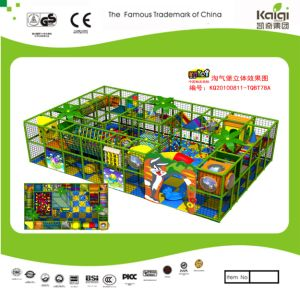 Kaiqi Large Indoor Playground Set - Available in Many Colours (TQBT68A) pictures & photos