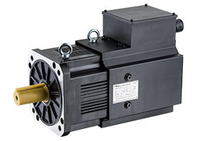 AC Permanent Magnet Synchronous Servo Motor pictures & photos