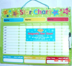 Magnetic Star Chart (879)