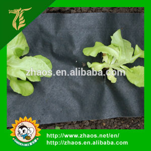 Hot Sale Popular Type Biodegradable Plastic Film for Agriculture pictures & photos