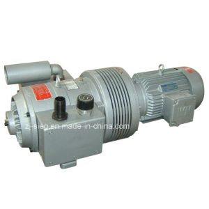 Dry Rotary Vane Compressor Pump for Pulse Dust Collector pictures & photos