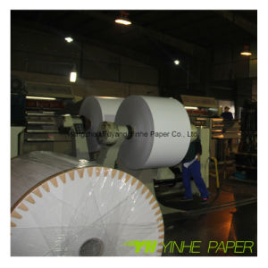 230-500GSM Gray Back Paper Mill C1s White Duplex Paper Card Board