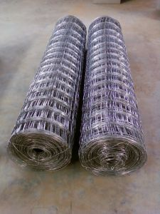 High Quality Hot DIP Galvanized Field Fence (XM-FF01) pictures & photos