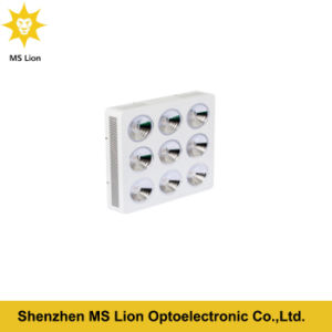 800W 1000W 1500W 1800W 2000W COB LED Grow Light