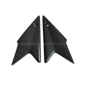 Side Panels for Triumph Speed Triple 1050 (08-10)