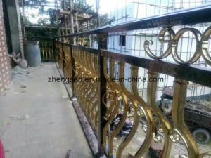 Professional Manufacturer 304 Corlored Stainless Steel Fence pictures & photos