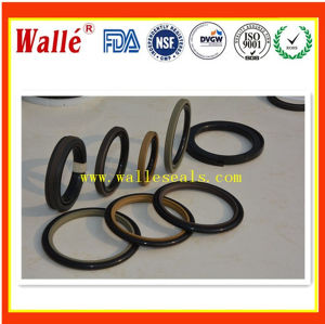 Custom Manufacture Nok Spnc Rod Seals pictures & photos