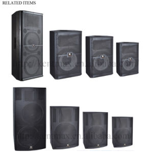 2017 New Design Hi Fi Professional DJ Speaker with FM USB pictures & photos
