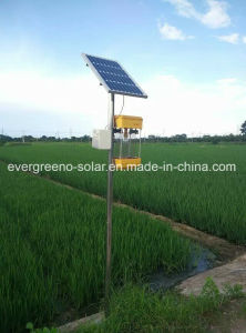 Popular Solar Insecticidal Lamp for Home or Farm pictures & photos