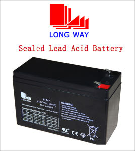 12V Emergency Lighting Rechargeable UPS Sealed Lead-Acid Battery pictures & photos