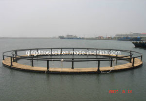 Environmental Friendly Deep Water Net Cage pictures & photos