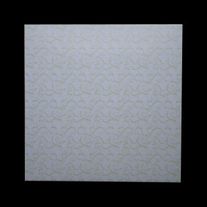 600*600 Mm Hot Satmping 60cm*60cm PVC Panel pictures & photos