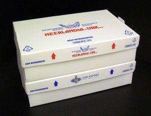 PP Corrugated Plastic Box for Frozen Fish pictures & photos