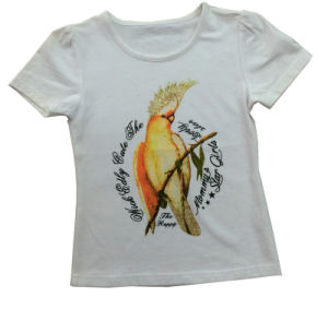 Cheap Wholesale 100% Cotton Fancy Kids Cartoon Bird Child T Shirt Sgt-014