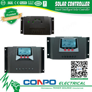 Wp-10A~60A, 12V/24V or 48V, LED/LCD, PWM Solar Controller pictures & photos