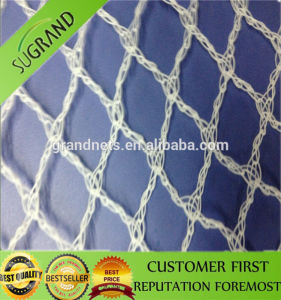Cheap Bird Protection Netting Factory Price pictures & photos