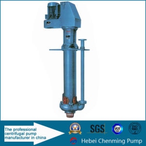 Submersible Centrifugal Vertical Sump Pump for Mining