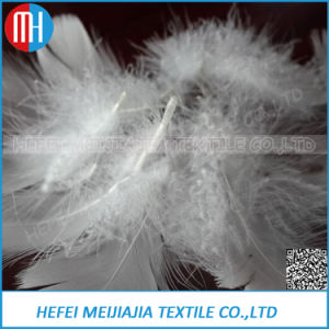 2-4 Cm White Goose Feather for Pillow pictures & photos