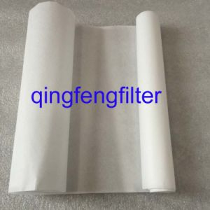 Polyethersulfone PP Membrane Filter for Liquid and Air Filtration pictures & photos