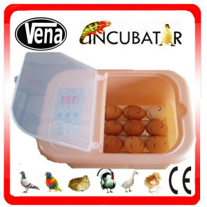 2015 Newest Mini Chicken Egg Incubator for Sale pictures & photos