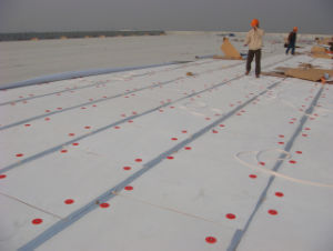 High Quality Planting Roof PVC Membrane with ISO Certificate (Anti-UV) pictures & photos