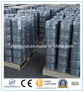 Manufacture Galvanized Steel Farm Field Deer Fence (ISO&CE Certificated)