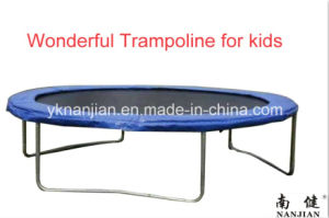 Purchase Bungee Bungee Trampoline From China pictures & photos