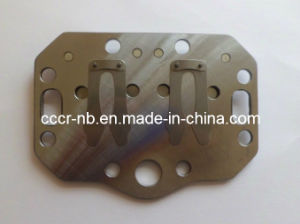 Valve Plate Assembly for Bitzer pictures & photos