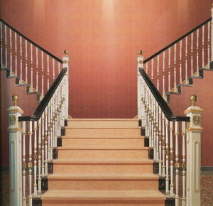 Wrought Iron Railing for Stair pictures & photos