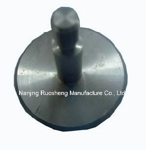 Machined Stainless Steel Plunger for Machinery Accessories