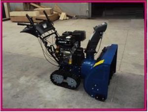 "42"" Two- Stage Snow Blower (FG13HP) pictures & photos"