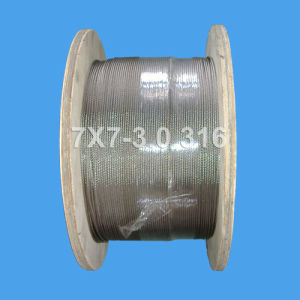 7X7-3.0 Stainless Steel Wire Rope (DSCF0504) pictures & photos