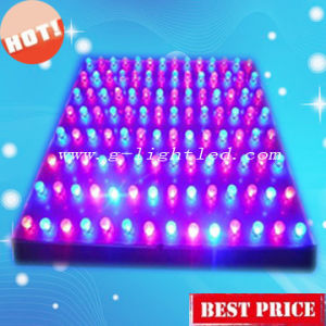 45W LED Grow Light (GL-G-45W)