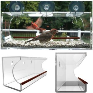 Customized Large Acrylic Window Bird Feeder with Power Suction Cups and Drain pictures & photos