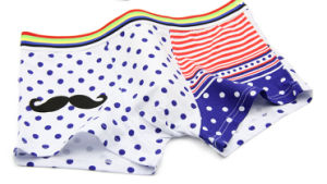 100% Cotton Underwear Boxer Brief Men 201 pictures & photos