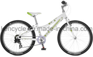 Hot Selling Mountain Bike/MTB Bike/Mountain Bike Bicycles/MTB Bicycles/Atb Bike pictures & photos