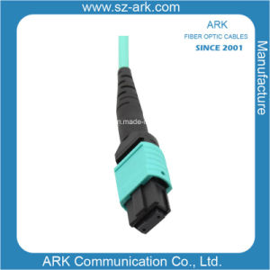 MTP/MPO Data Transmission Fiber Optic Ribbon Cable pictures & photos