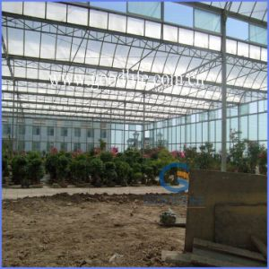 Transparent/Opal White/Blue/Green/Lake Blue/Bronze Polycarbonate Sheet for Greenhouse pictures & photos