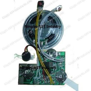 Recordable Sound Module, Sound Cards, Voice Chip, Voice Module Recorder pictures & photos