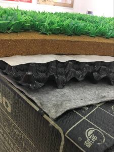 Anti-Puncture Tpo Waterproofi Membrane for Planting Roofing pictures & photos
