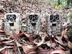 12MP HD 1080P Waterproof Black IR Hunting Camera pictures & photos