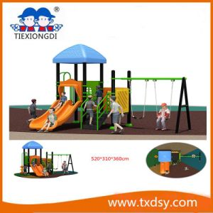 China Amusement Park Outdoor Playground Equipment Txd16-Bh10803 pictures & photos