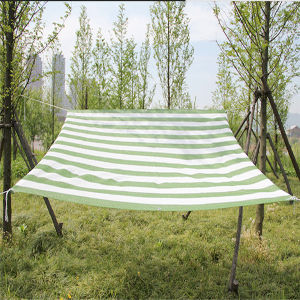 Agro HDPE Green Sun Shade Netting/PE Coating Sun Shade Net pictures & photos