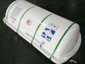 Solas and ISO Standard 25 Person Davit-Launched Inflatable Liferaft with CCS Certificate pictures & photos