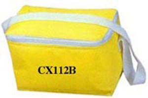 Promotional Cooler Picnic Lunch Bag