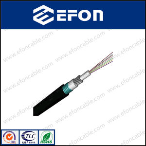 Singlemode Optical Fiber Cable 6 Cores pictures & photos