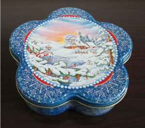 2015 Hot Sale Snow Shape Tin Box for Food pictures & photos