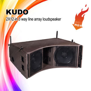 Dual 12-Inch 3-Way Outdoor Big Power Line Array System pictures & photos